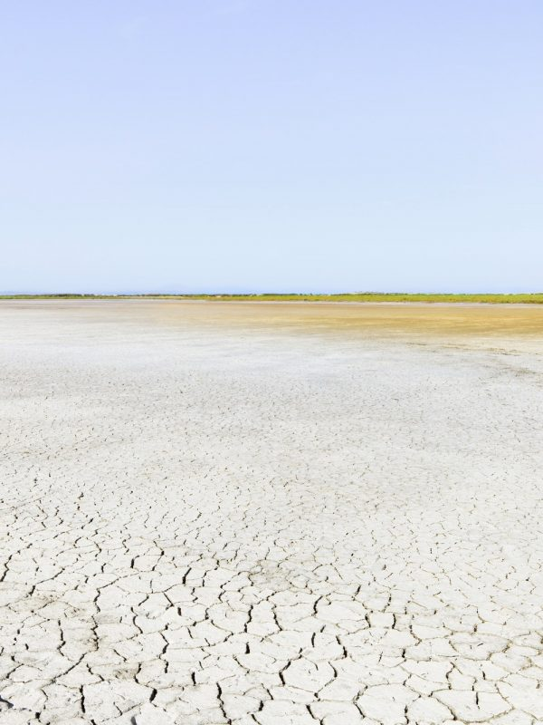 Camargue Rhone Park landscape, soil drought and horizon. Provence, France.