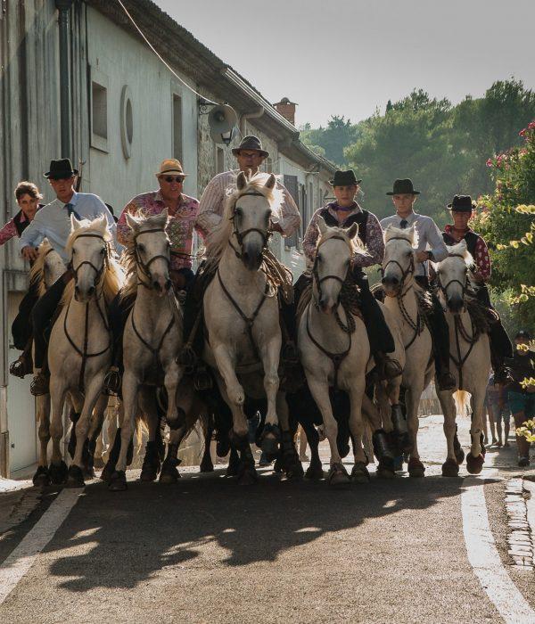 people-tourism-horses-camargue-feria-bulls- Visit Provence